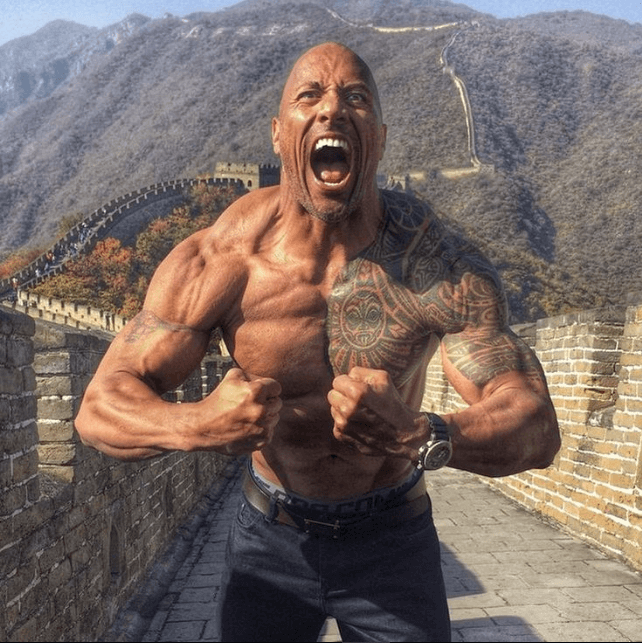 the rock gear dwayne johnson supplements